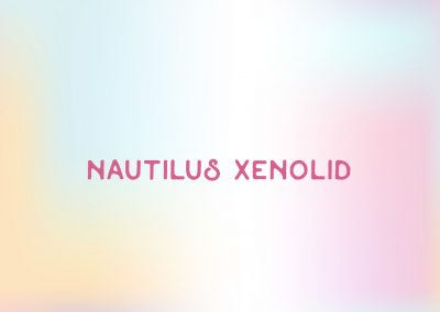 Nautilus Xenolid